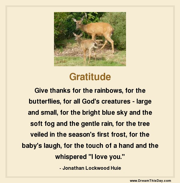 Thanksgiving Thoughts And Thanksgiving Words From Daily
